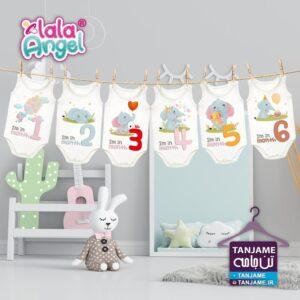 با خرید این پک لباس ماهگرد نوزاد میتوانید در منزل یکسال اول شیرین نوزاد تادان را با تفن همراه ثبت خاطره نموده و دورانی که هیچوقت تکرار نمیشود را خاطره ساز نمایید